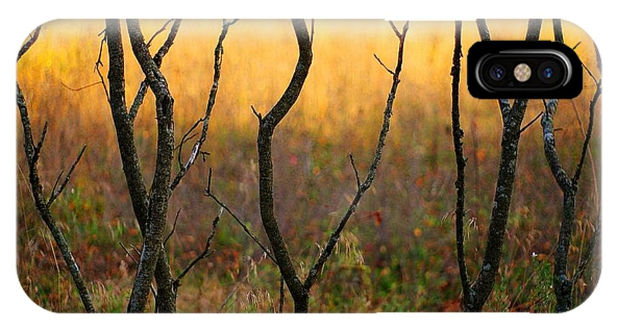 Dance IPhone X Case featuring the photograph Dancing Trees by Randy Pollard