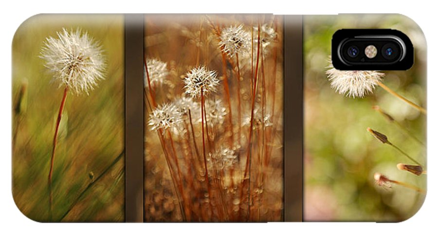 Dandelions IPhone X Case featuring the photograph Dandelion Series by Jill Reger