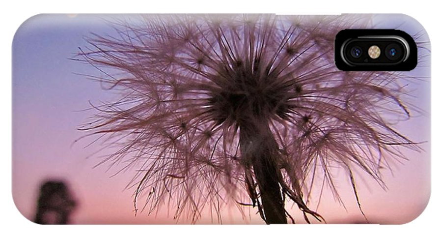 Flower IPhone X Case featuring the photograph Dandelion Sunset by Ginger Adams