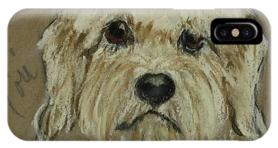 Dandie Dinmont Terrier IPhone X Case featuring the drawing Dandie by Cori Solomon