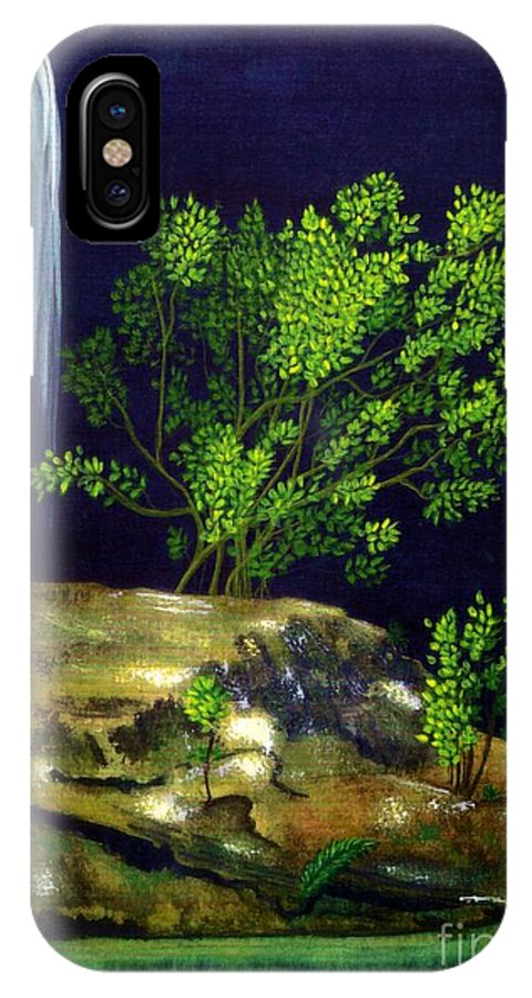 Fine Art IPhone X Case featuring the painting Dark Waters by Patricia Griffin Brett