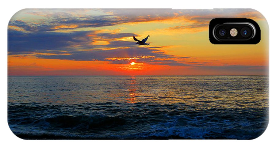 Sea IPhone X Case featuring the photograph Dawning Flight by Dianne Cowen