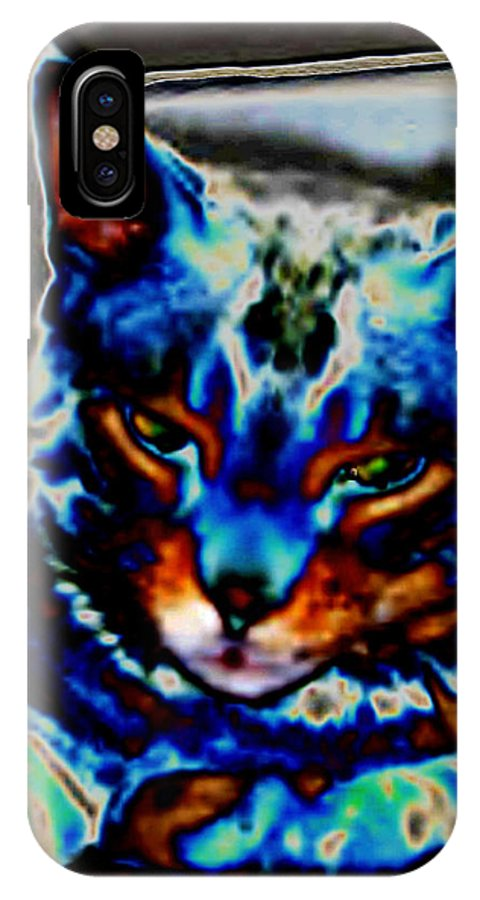 Cat IPhone X / XS Case featuring the photograph Day Dreamer by Dawn Johansen