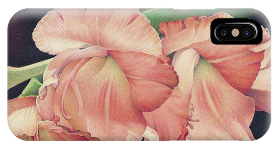 Gladiolas IPhone X Case featuring the drawing Daylights Last Dance by Amy S Turner