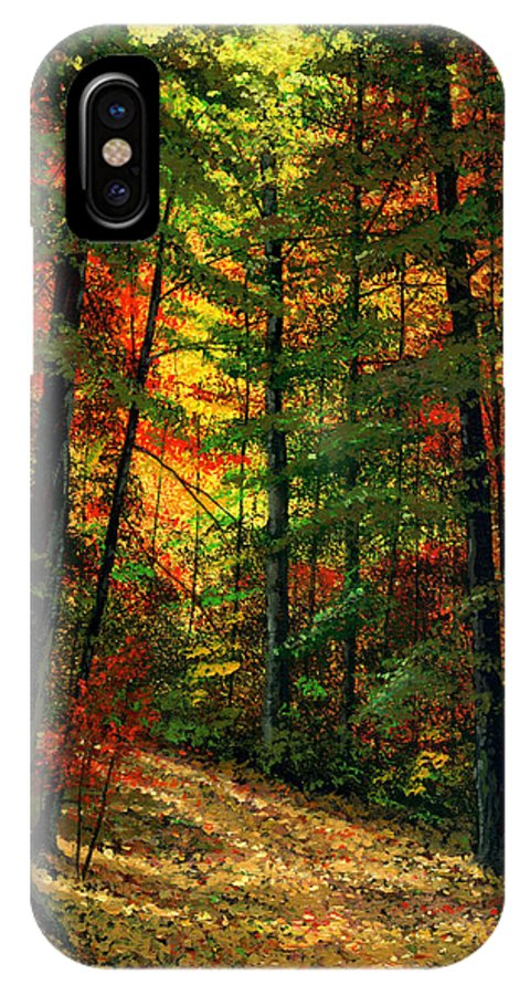 Landscape IPhone X Case featuring the painting Deep In The Forest by Frank Wilson