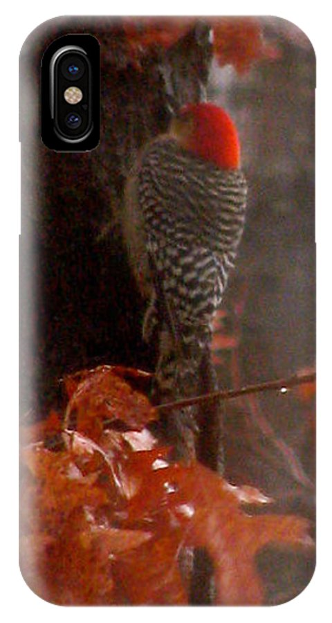 Red Headed Woodpecker IPhone X Case featuring the photograph Deep In The Forest Woodpecker by Debra   Vatalaro