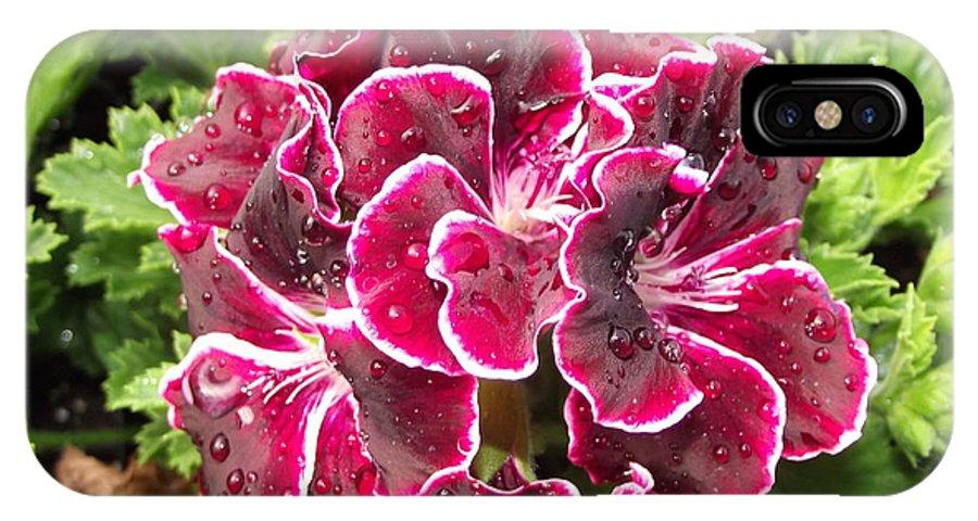 Purple IPhone X Case featuring the photograph Deep Purple Geranium by Pamela Pursel