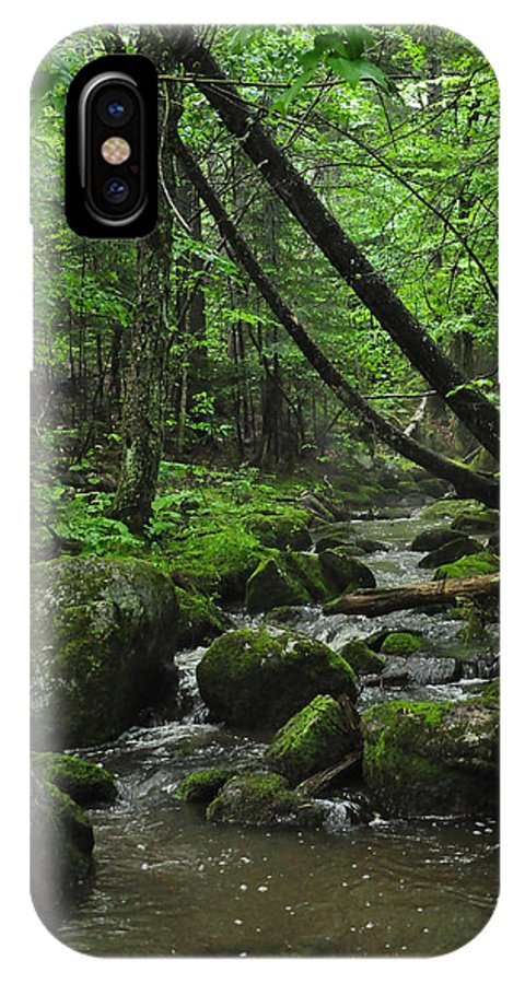 Stream IPhone X Case featuring the photograph Deep Woods Stream 3 by Glenn Gordon
