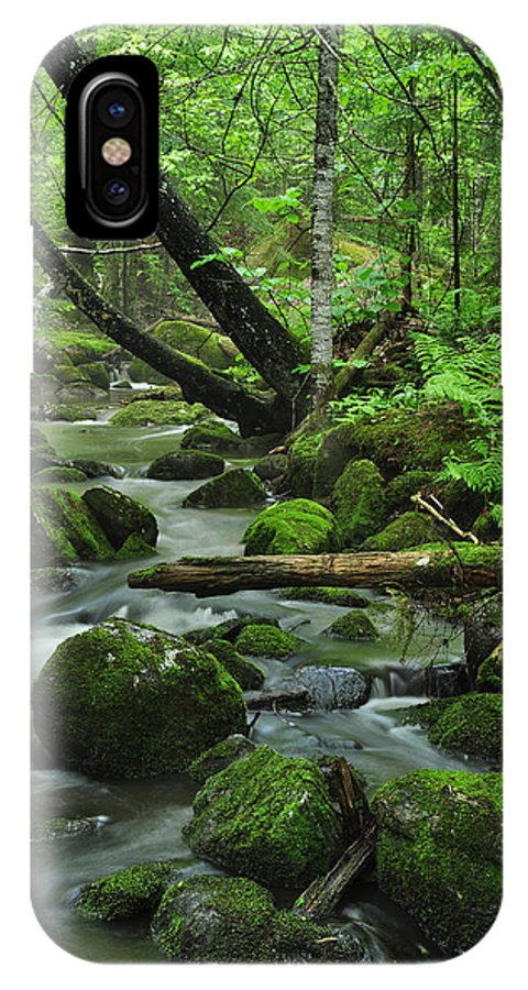 Stream IPhone X Case featuring the photograph Deep Woods Stream by Glenn Gordon