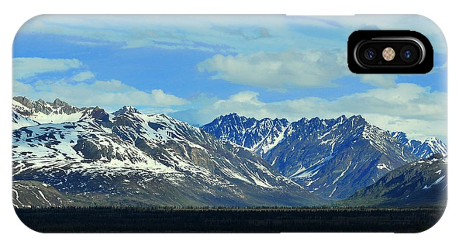 Denali IPhone Case featuring the photograph Denali Valley by Keith Gondron