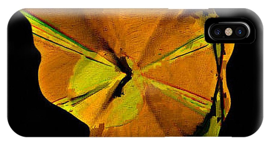 Digital IPhone X Case featuring the digital art Desert Lady by Ilona Burchard