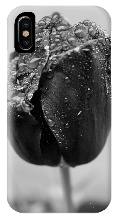 Outdoors IPhone X / XS Case featuring the photograph Dew Drop by Elizabeth Sponseller