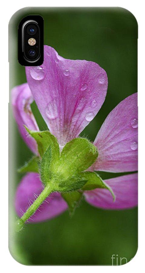 Flower IPhone X Case featuring the photograph Dew Kisses by Deborah Benoit