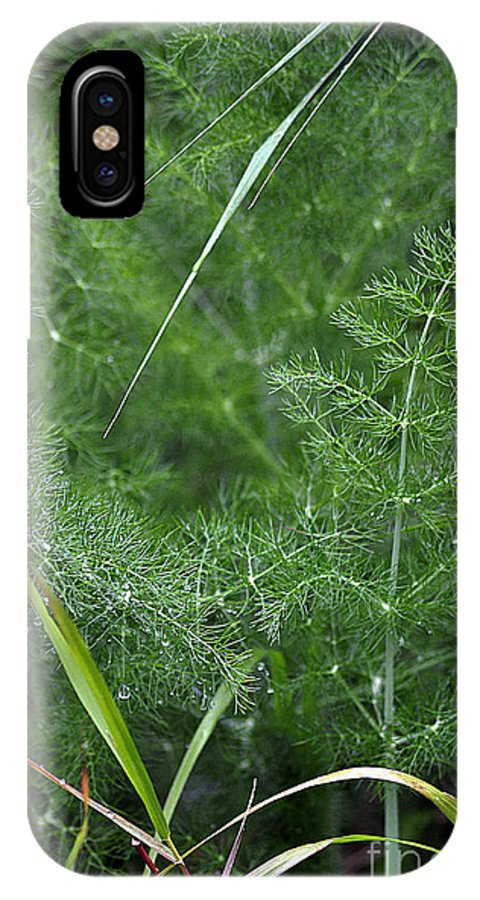 Clay IPhone X Case featuring the photograph Dew On The Ferns by Clayton Bruster