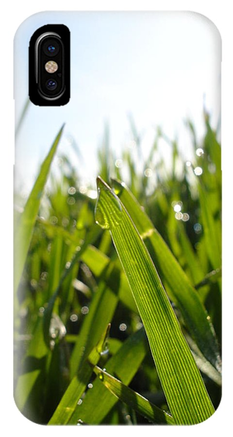 Flora IPhone X Case featuring the photograph Dewdrops On New Wheat by Susan Baker