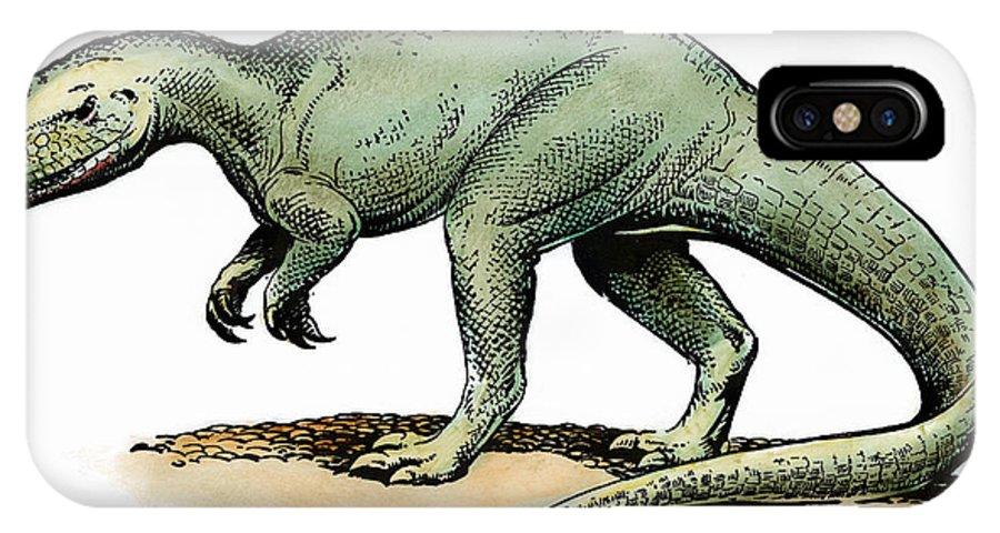 Allosaurus IPhone X Case featuring the photograph Dinosaur: Allosaurus by Granger