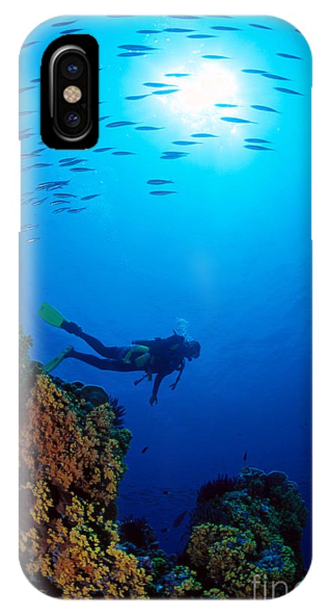 Bubble IPhone X Case featuring the photograph Diving Scene by Ed Robinson - Printscapes