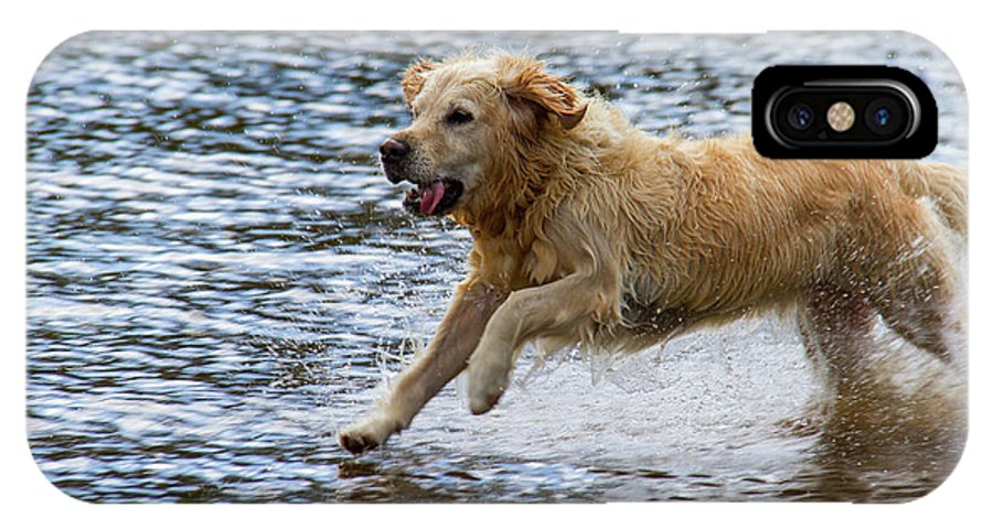 Cumbria Lake District IPhone X Case featuring the photograph Dog Running On Shallow Lake Shore by Iordanis Pallikaras