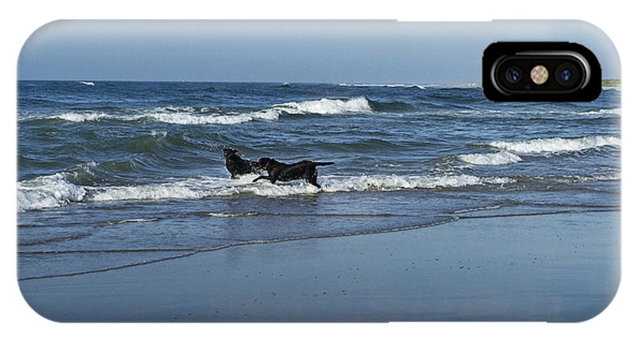 Dog IPhone X Case featuring the photograph Dogs In The Surf by Teresa Mucha