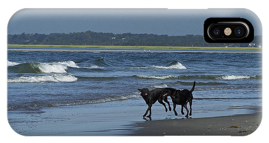 Dog IPhone X Case featuring the photograph Dogs On The Beach by Teresa Mucha