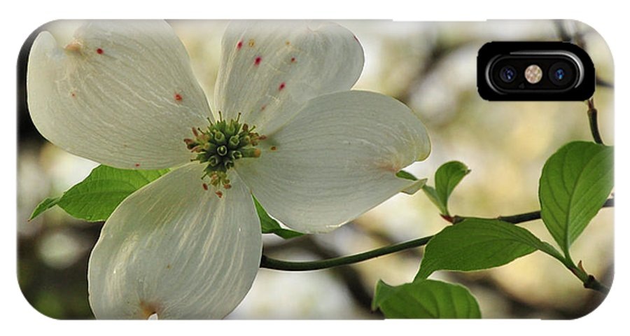 White IPhone X Case featuring the photograph Dogwood Bloom by Susan Cliett
