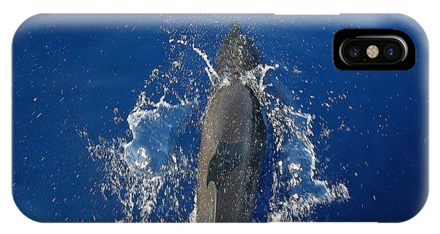 Dolphin IPhone X Case featuring the photograph Dolphin by J R Seymour