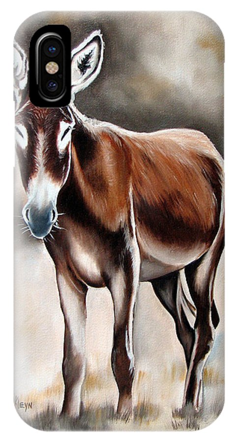 Animal IPhone X Case featuring the painting Donkey by Ilse Kleyn