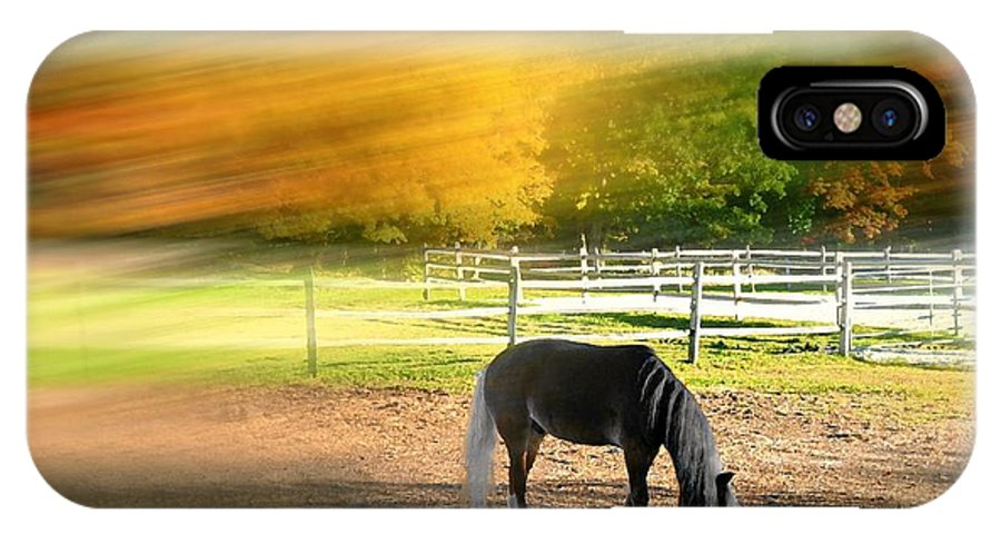 Farm IPhone X Case featuring the photograph It's Where You Find It by Diana Angstadt