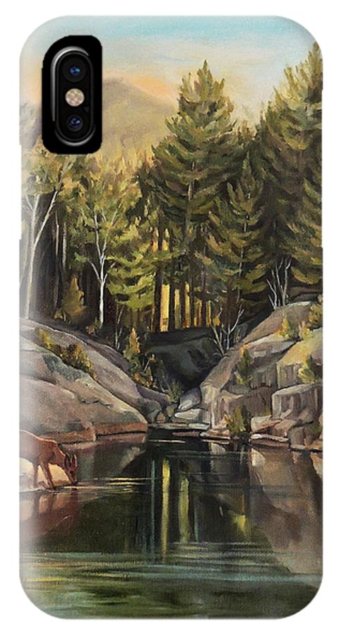 Pemigewasset River IPhone X Case featuring the painting Down By The Pemigewasset River by Nancy Griswold