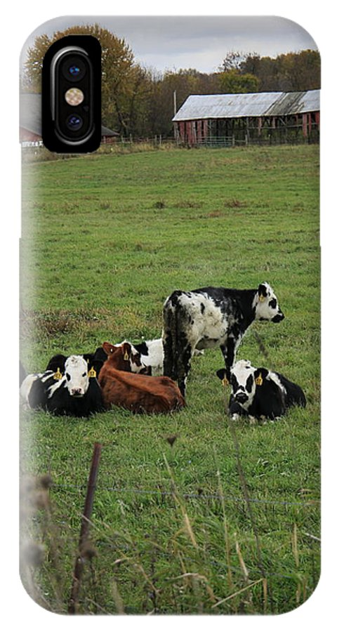 Cows IPhone X Case featuring the photograph Down On The Farm by Mark Salamon