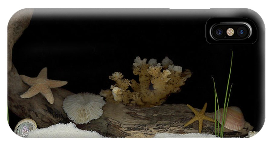Shells IPhone X Case featuring the mixed media Down Under by Sandi F Hutchins