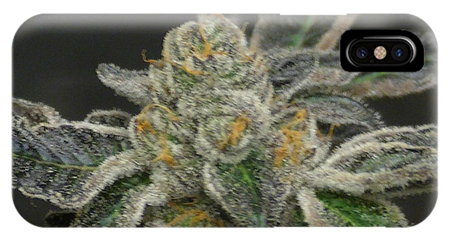 Marijuana IPhone X Case featuring the photograph Downtown Orange Kush by Jaime Moreno