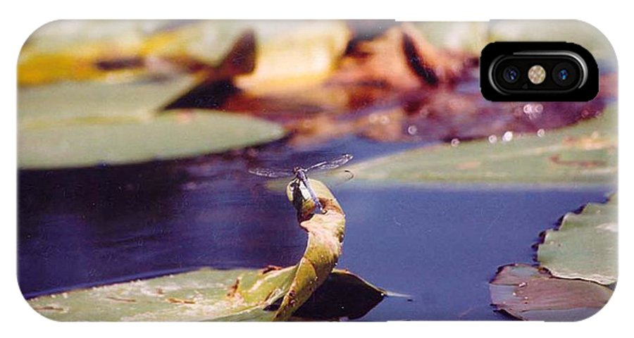 Insect IPhone X Case featuring the photograph Dragon Fly by Margaret Fortunato
