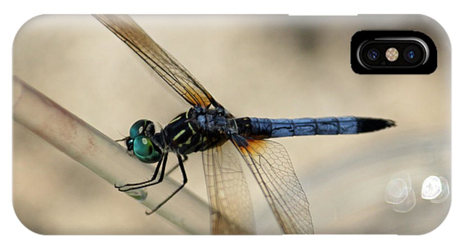 Dragonfly IPhone X Case featuring the photograph Dragonfly Abstract by Suzanne Gaff
