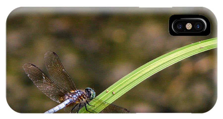Dragonfly IPhone X Case featuring the photograph Dragonfly by Amanda Barcon