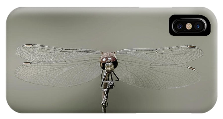 Dragonfly IPhone X Case featuring the photograph Dragonfly In Drag by Janet Argenta