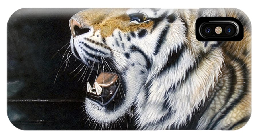 Tiger IPhone X Case featuring the painting Dragonfly by Sandi Baker