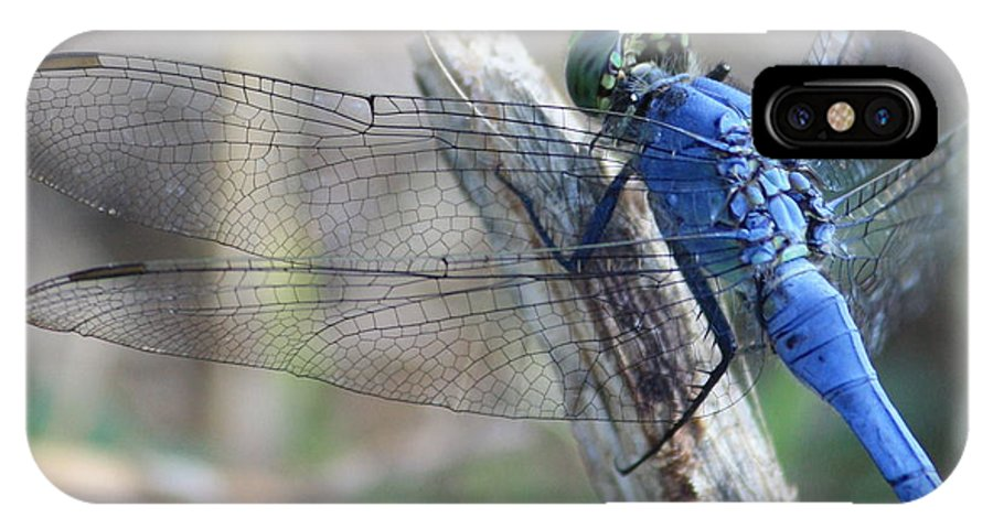 Dragonfly IPhone X Case featuring the photograph Dragonfly Wing Detail by Carol Groenen