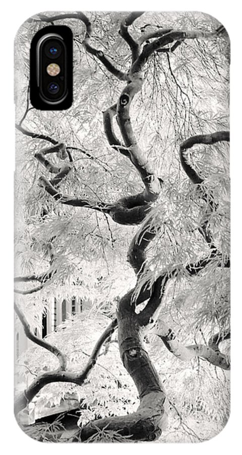 Bw IPhone X Case featuring the photograph Dream Tree by Dorit Fuhg