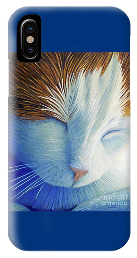 Cat IPhone X Case featuring the painting Dream Within A Dream by Brian Commerford