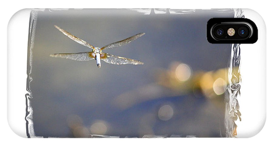 Greeting Cards IPhone X Case featuring the photograph Dreams Take Flight Poster Or Card by Carol Groenen