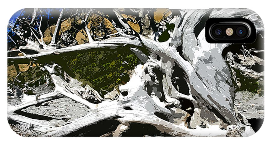 Drift Wood IPhone X Case featuring the painting Drift Wood by David Lee Thompson