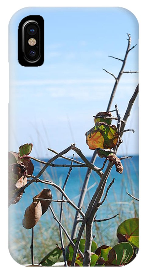 Ocean IPhone X / XS Case featuring the photograph Dune Plants by Rob Hans