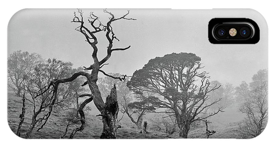 IPhone X Case featuring the photograph Dusk, Crannoch Woods by Iain Duncan