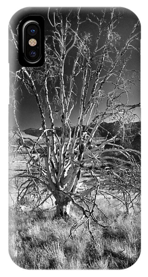 California IPhone X Case featuring the photograph Dying Tree by Norman Andrus