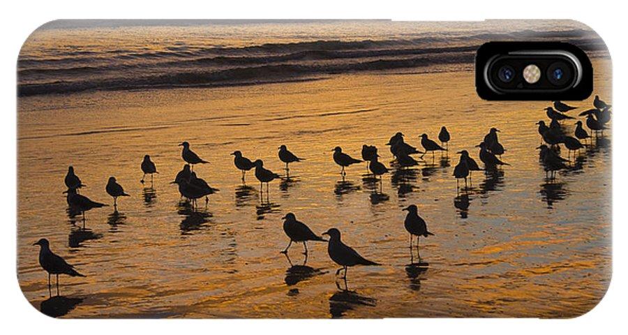 Beach Ocean Seagull Gull Bird Birds Sand Wave Waves Sun Sunrise Reflection Shaddow Sky Cloud IPhone X Case featuring the photograph Eager Anticipation by Andrei Shliakhau