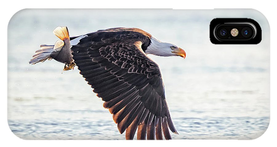 Eagle IPhone X Case featuring the photograph Eagle Catch by Monica Hall