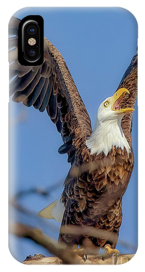 Raptor IPhone X Case featuring the photograph Eagle Excitement by Monica Hall