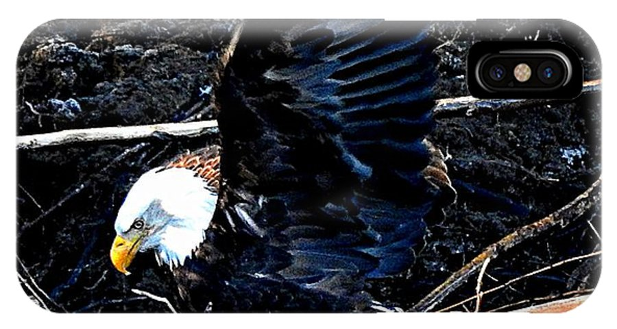 Feed IPhone X / XS Case featuring the photograph Eagle Getting Ready To Feed by Sandra Peery