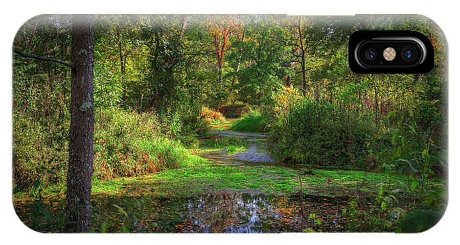2014 IPhone X Case featuring the photograph Early Fall At Montauk State Park by Larry Braun